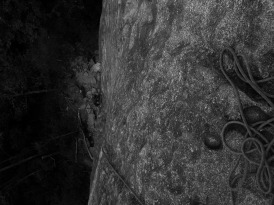 Climbing Looking Glass, North Carolina.