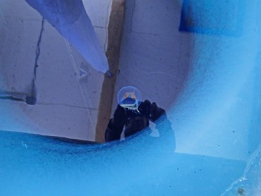 Looking into a dive hole in the sea ice. I saw a jelly fish.