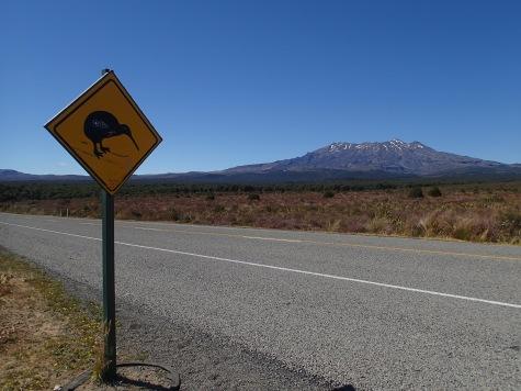 Mount Tongariro, New Zealand.
