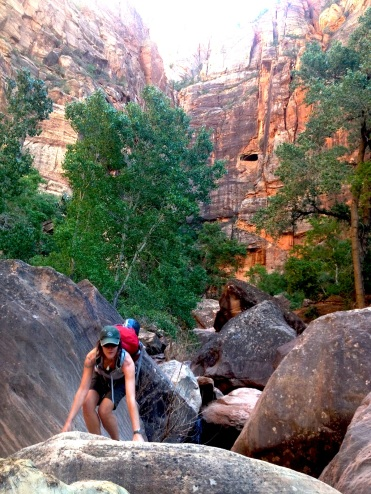 Hiking in Zion.