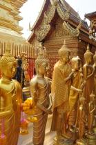 Gold Buddhas Doi Suthep, Wat Phra Thrat, Thailand.