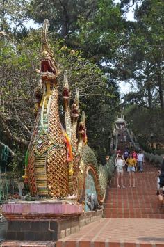 Staircase to Doi Suthep, Wat Phra Thrat, Thailand.