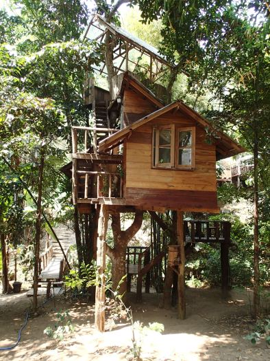 One of the tree houses we stayed in while in Doi Suket, Thailand.