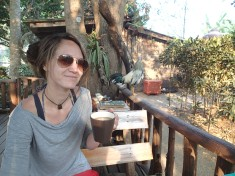 Morning coffee shared with a noisy rooster in Doi Suket, Thailand.