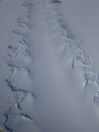 Strangely, the glacier looks almost identical to enormous penguin tracks. Kind of bizarre.