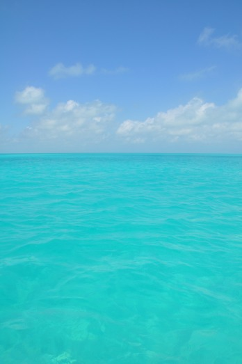 Gin clear water of the Bahamas.