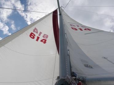 Lovely sails full of wind.