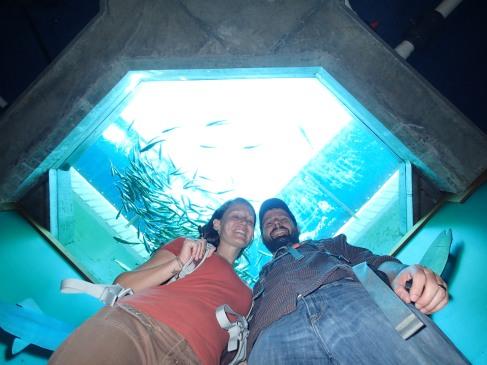 Seattle Aquarium.