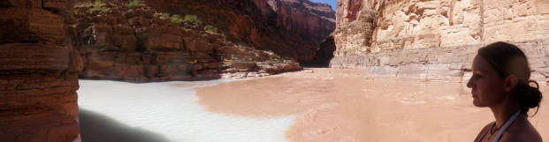 Where the Colorado River meets the blue waters of Havasupai.