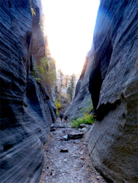 For the love of canyoneering.